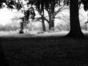 Gourdneck Prairie Cemetery #07