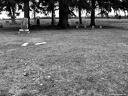 Gourdneck Prairie Cemetery #18