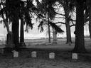 Gourdneck Prairie Cemetery #06