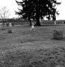 Gourdneck Prairie Cemetery #17
