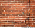 brick wall with wires -- We generally think of bricks as being incredibly uniform—nobody wants to be just another brick in the wall. But these bricks are anything but uniform.<br /><br />And what's with the wires? Where do they begin? Where do they end? Why is there a loop?