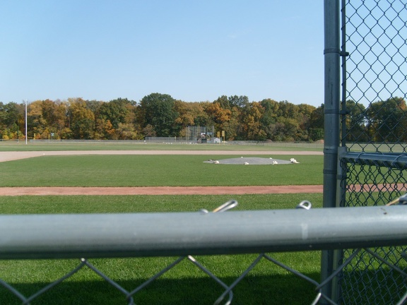 The view from the dugout(S7301555)